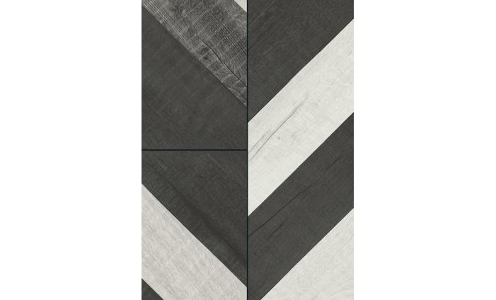 Dub Vidora sivý