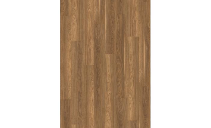 Orech Mansonia